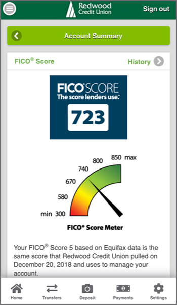 Image of an example of a FICO<sup>&reg;</sup> Score Page