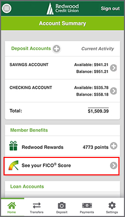 See Your FICO Score