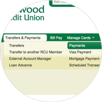 Transfers & Payments click on Payments